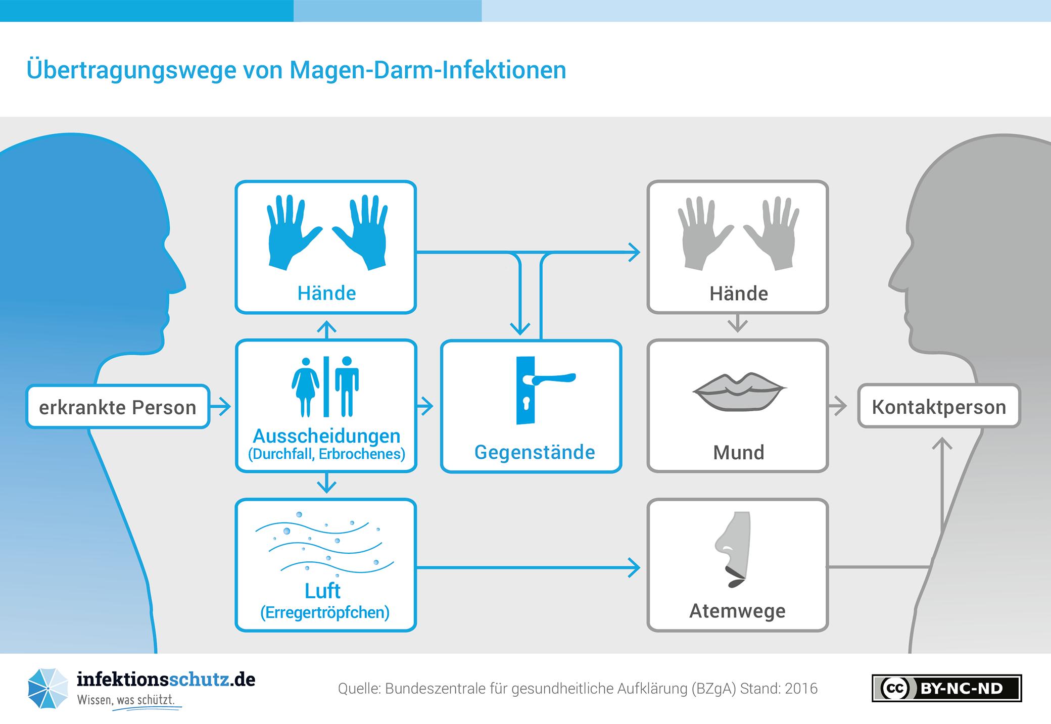 Magen-Darm-Infektionen - infektionsschutz.de